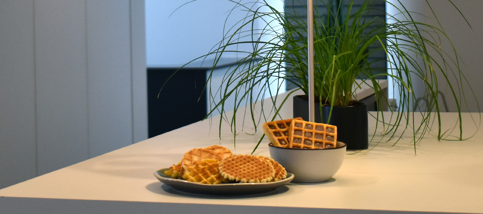 Arwem Food Group is the expert in food trade and tasty waffles